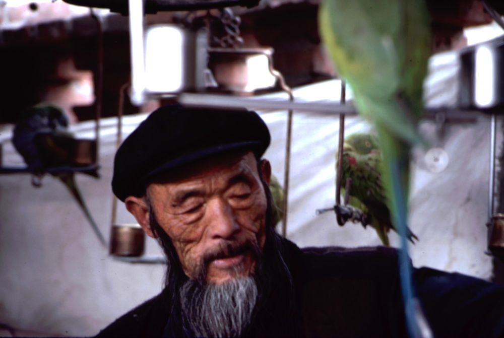 Peking's bird market