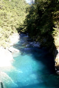 The blue is the natural colour of the fantastically clear meltwater pouring off the mountains into the Haast river. Further north, with the Fox and Franz Josef glaciers, the ice that generates this beautiful water comes almost right down to the coast.