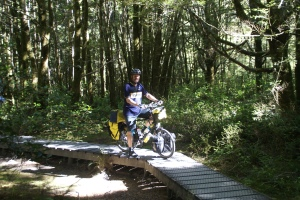Riding Raven back up through the rainforest from our visit down off the road to the Blue Pools