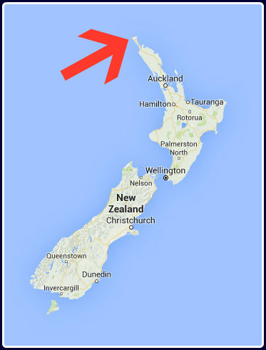 NZ with arrow