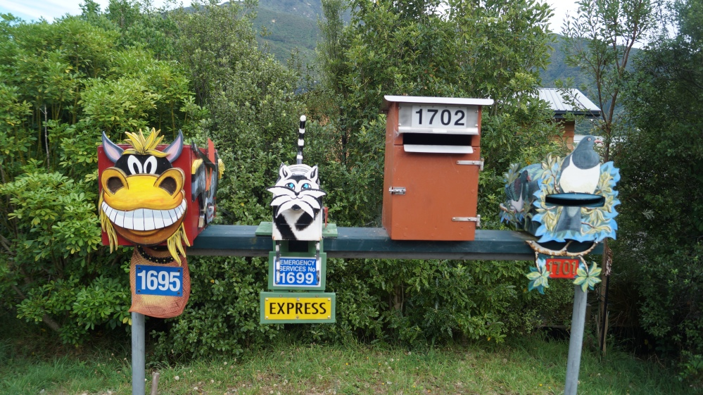 The Kiwis love their post boxes.