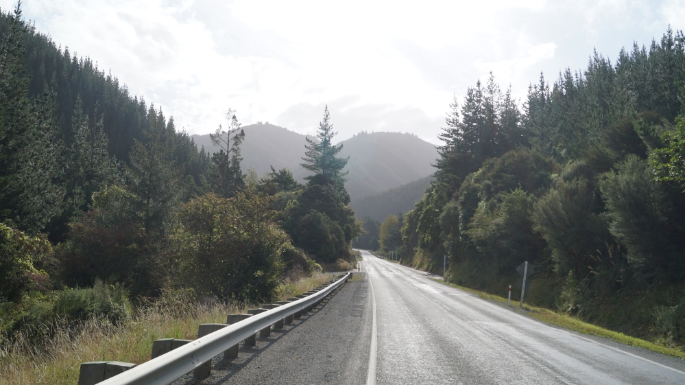 The road to Nelson.